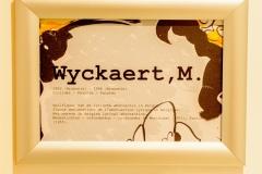 De-Kleine-Mote-Wyckaert-1