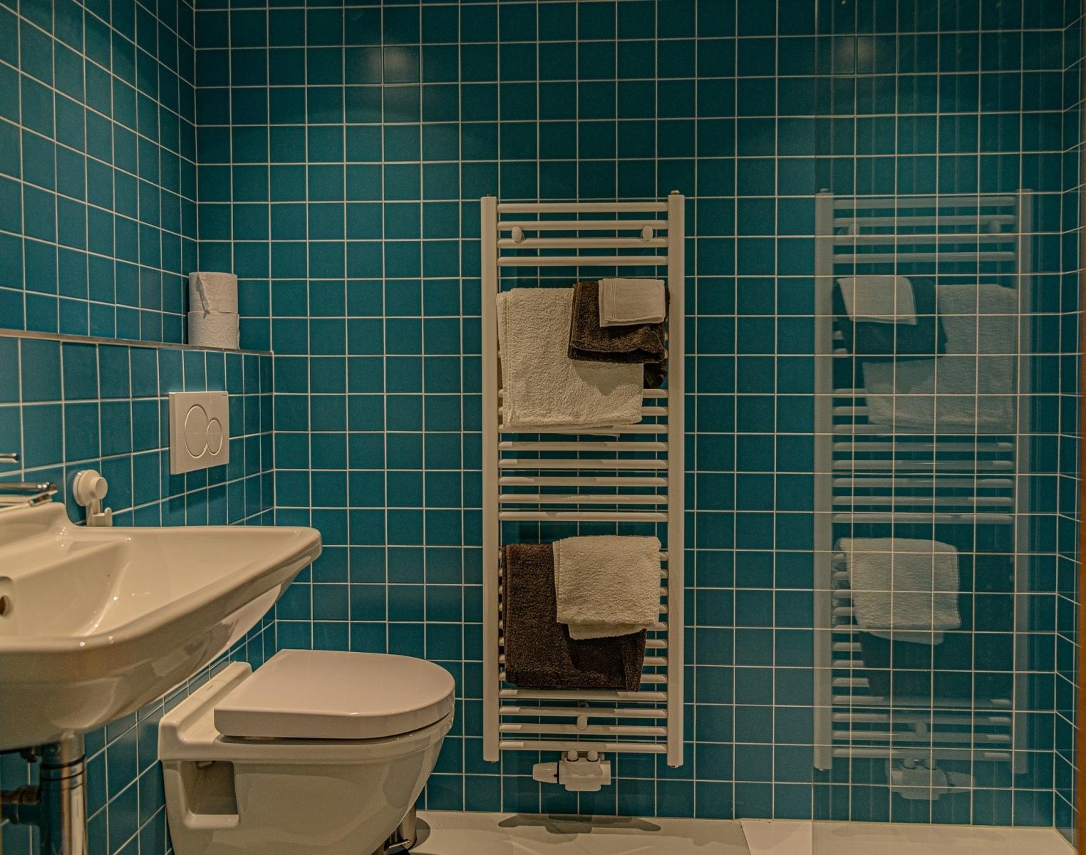 De-Kleine-Mote-Wyckaert-badkamer-1
