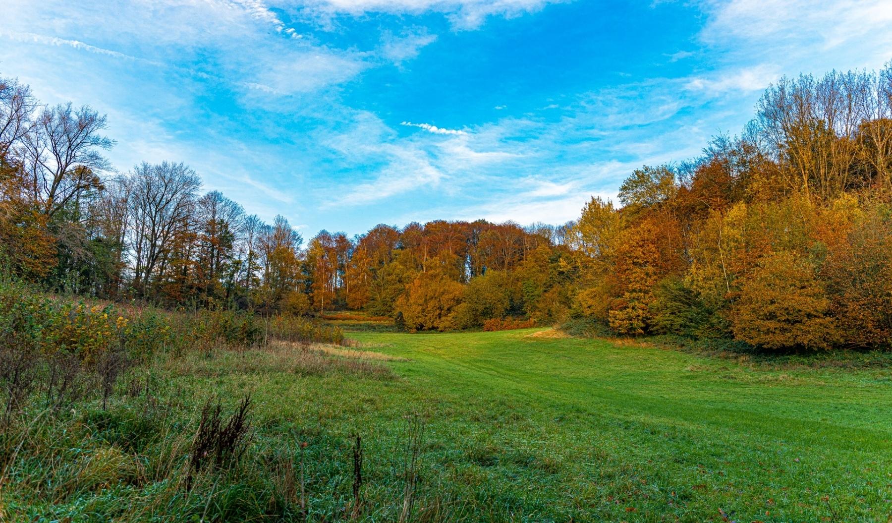 Heuvelland-november-2020-88