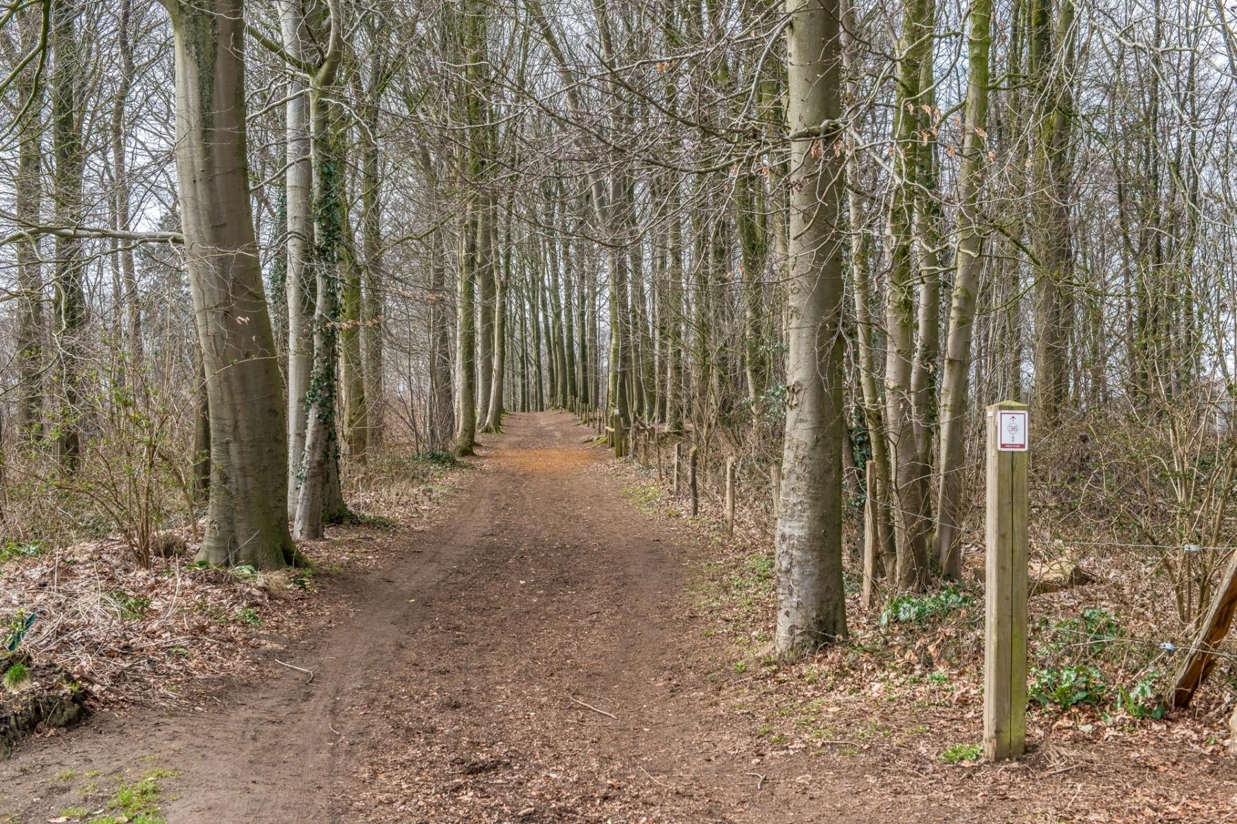 Region-hiking-trail