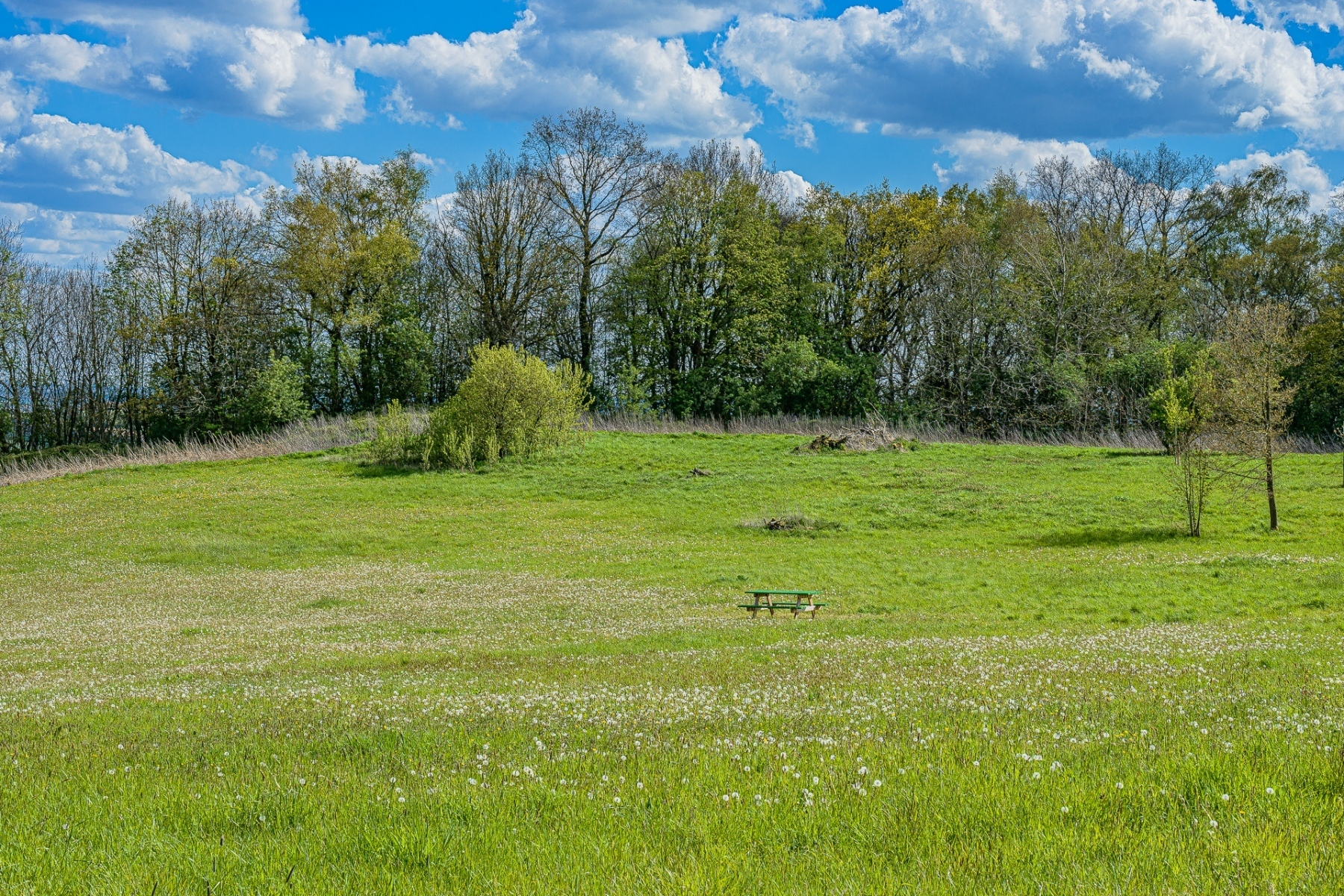 Heuvelland-mei-2021-58