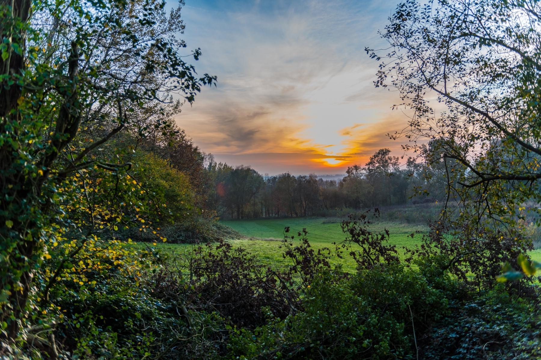 Heuvelland-november-2020-110