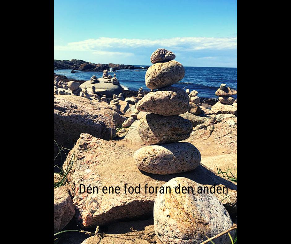 denenefodforandenanden.dk