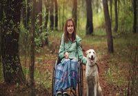 Aufgaben von Assistenzhunden. Mädchen mit Rollstuhl neben Hund im Wald
