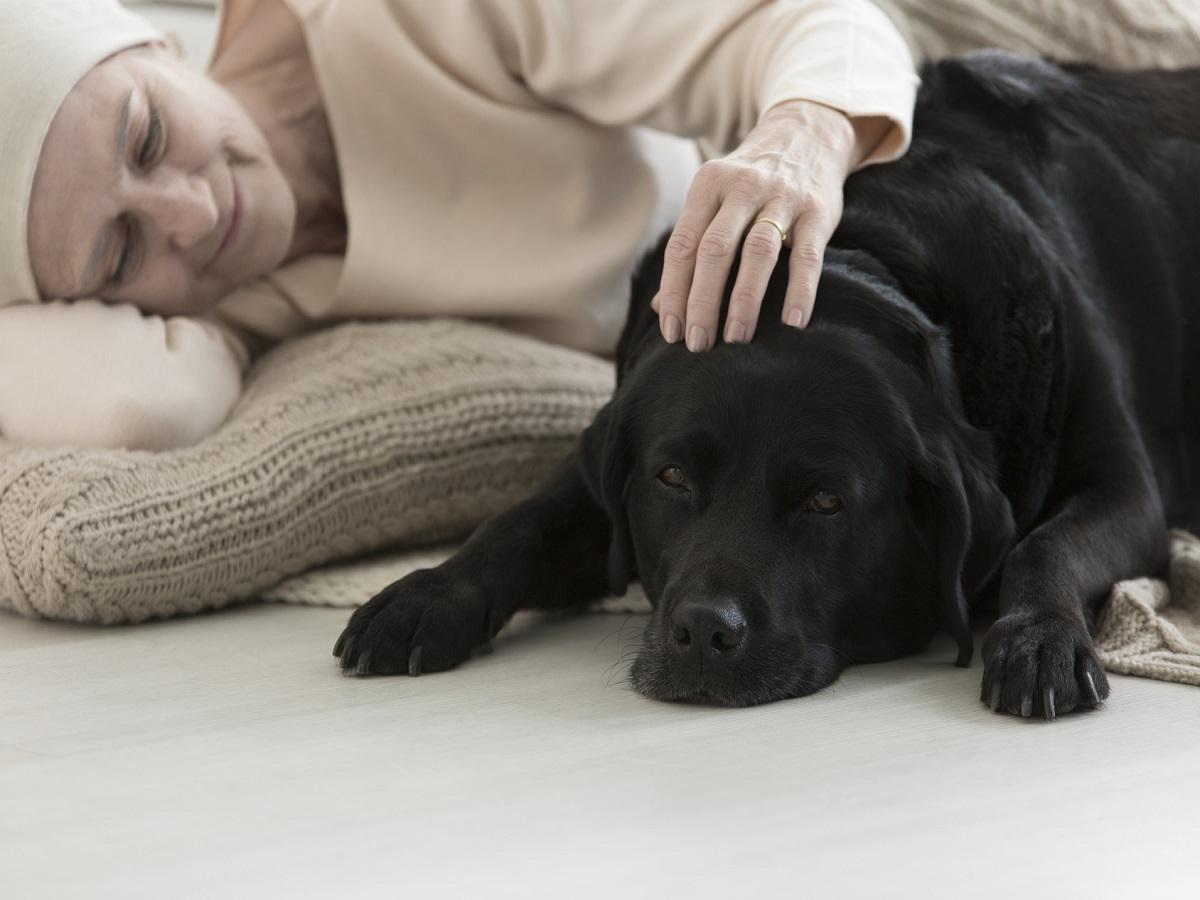 Aufgaben von Assistenzhunden. Kranke Frau streichelt Hund