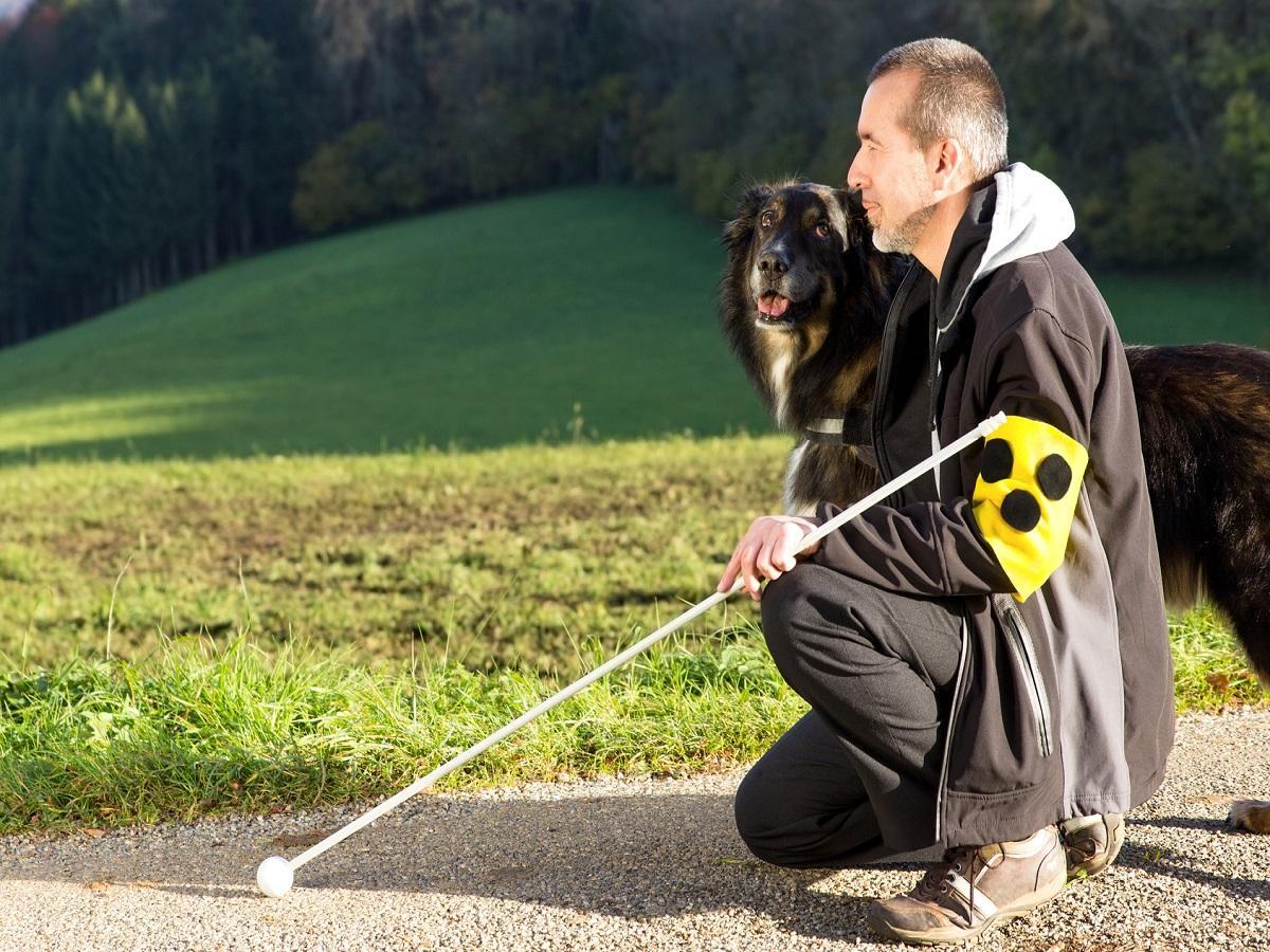 Blindenführhund. Ein blinder Mann kniet neben seinem aufmerksamen Blindenführhund