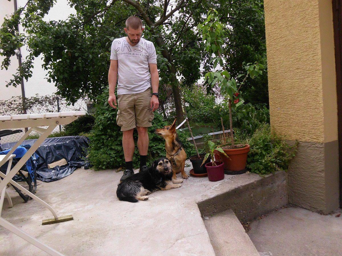 Finde eine bestimmte Person für ein Hundeleckerli. Zwei Hunde sitzend und liegend vor Herrchen im Garten