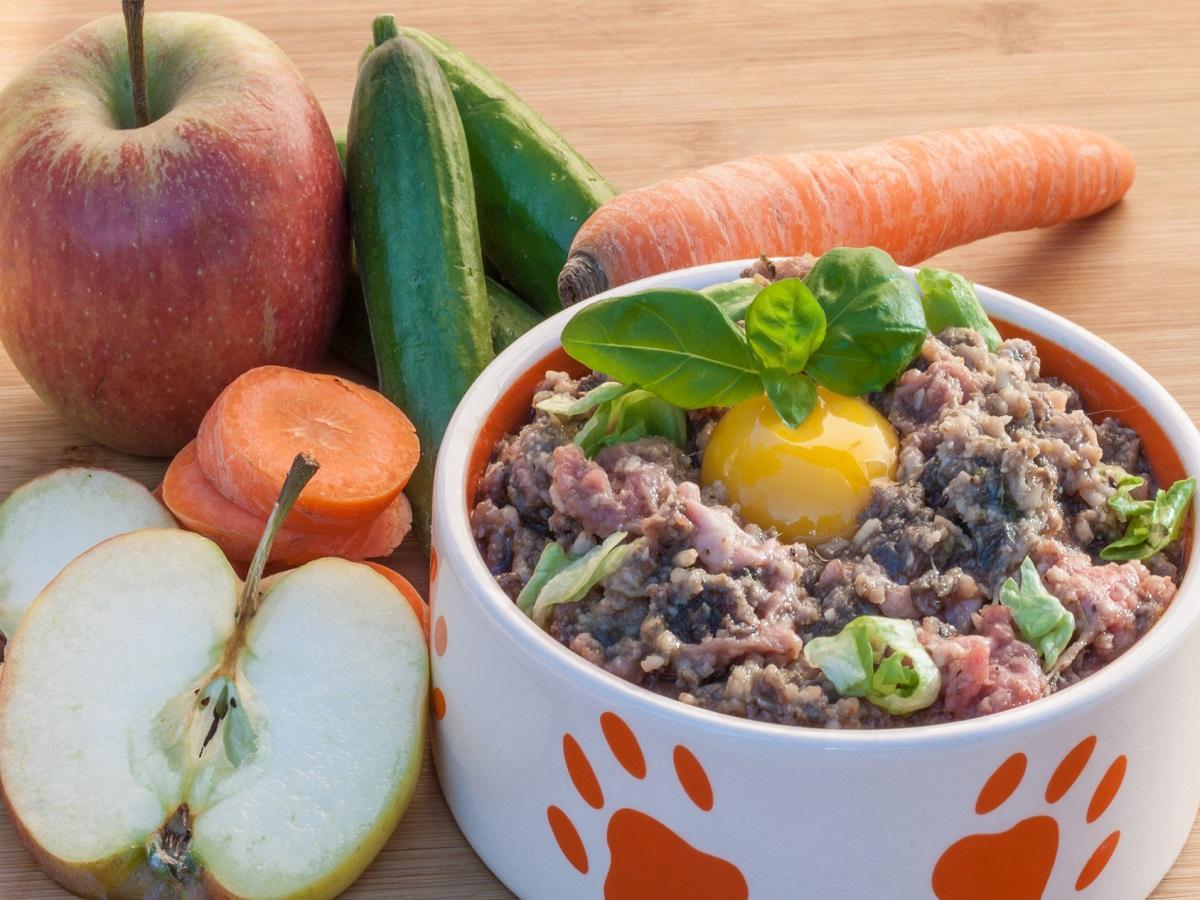 Futtermittel Allergie beim Hund. Futternapf mit Hackfleich und rohem Ei neben Obst und Gemüse