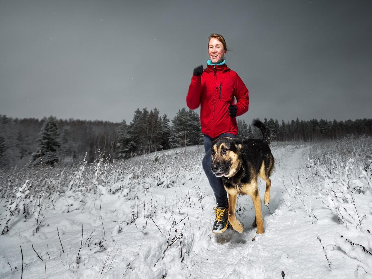 Geländelauf mit Hund. Junge Dame, die auf dem Gebiet des verschneiten Winters mit dem Hund läuft