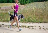Geländelauf mit Hund. Frau joggt mit Hund an Leine