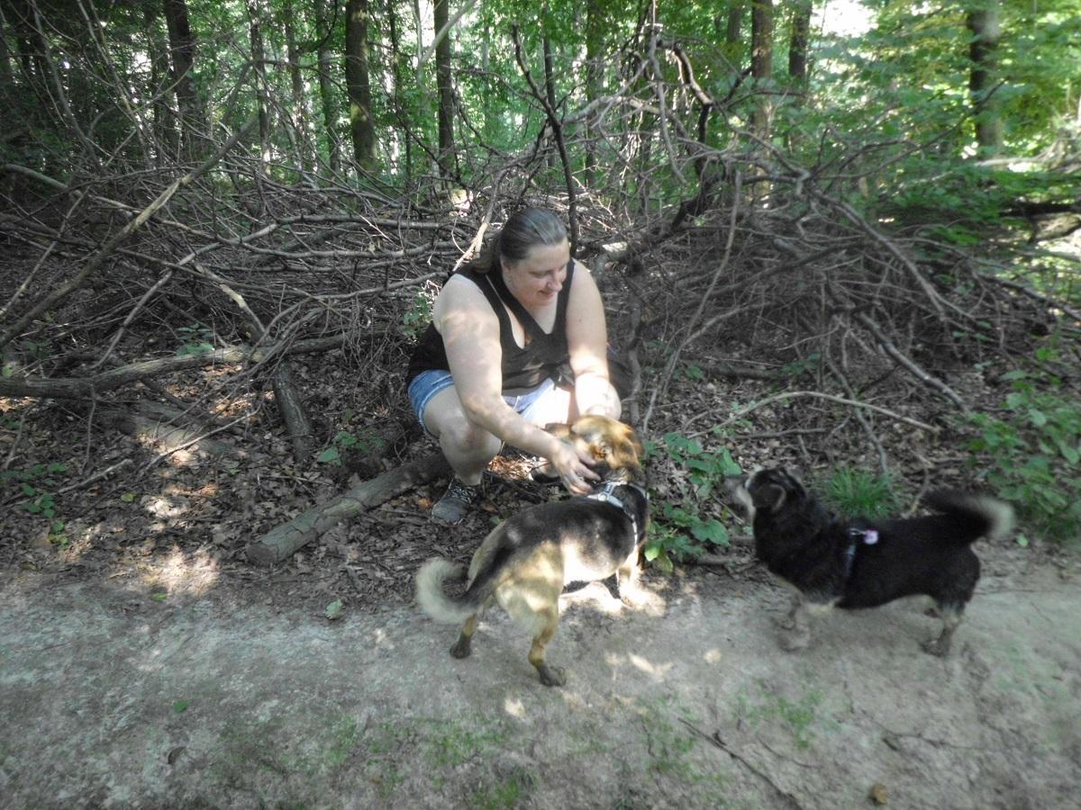 Giardien beim Hund. Frau streichelt ein Hund im Wald