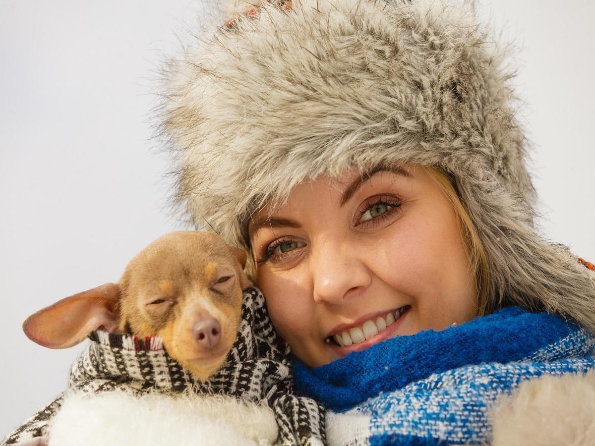 Hund bei kälte. Junge Frau wickelte ihren kleinen Hund in warmen umfassenden Schal ein, um ihn am kalten Wintertag zu wärmen.