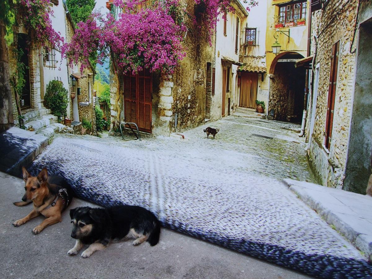 Hundehautwurm beim Hund. Zwei Hunde vor einem Bild der Toskana
