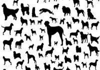 Hunderassen als Schattenriss