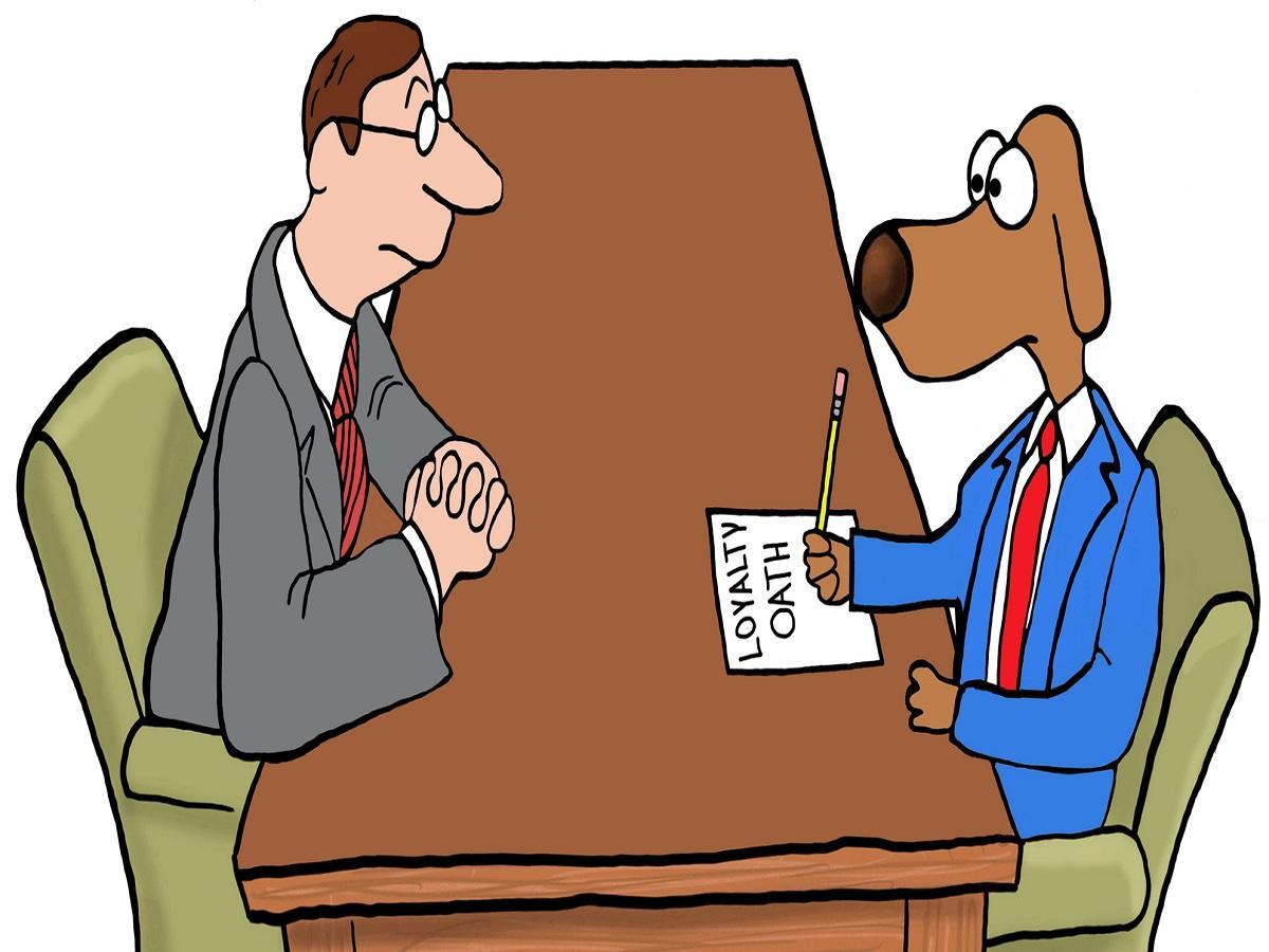 Sachkundenachweis §11 Tierschutzgesetz. Herrchen mit Hund am Verhandlungstisch