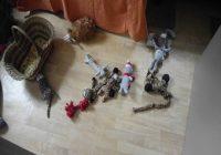 Spielzeug aufräumen. Chaos mit Hundespielzeug