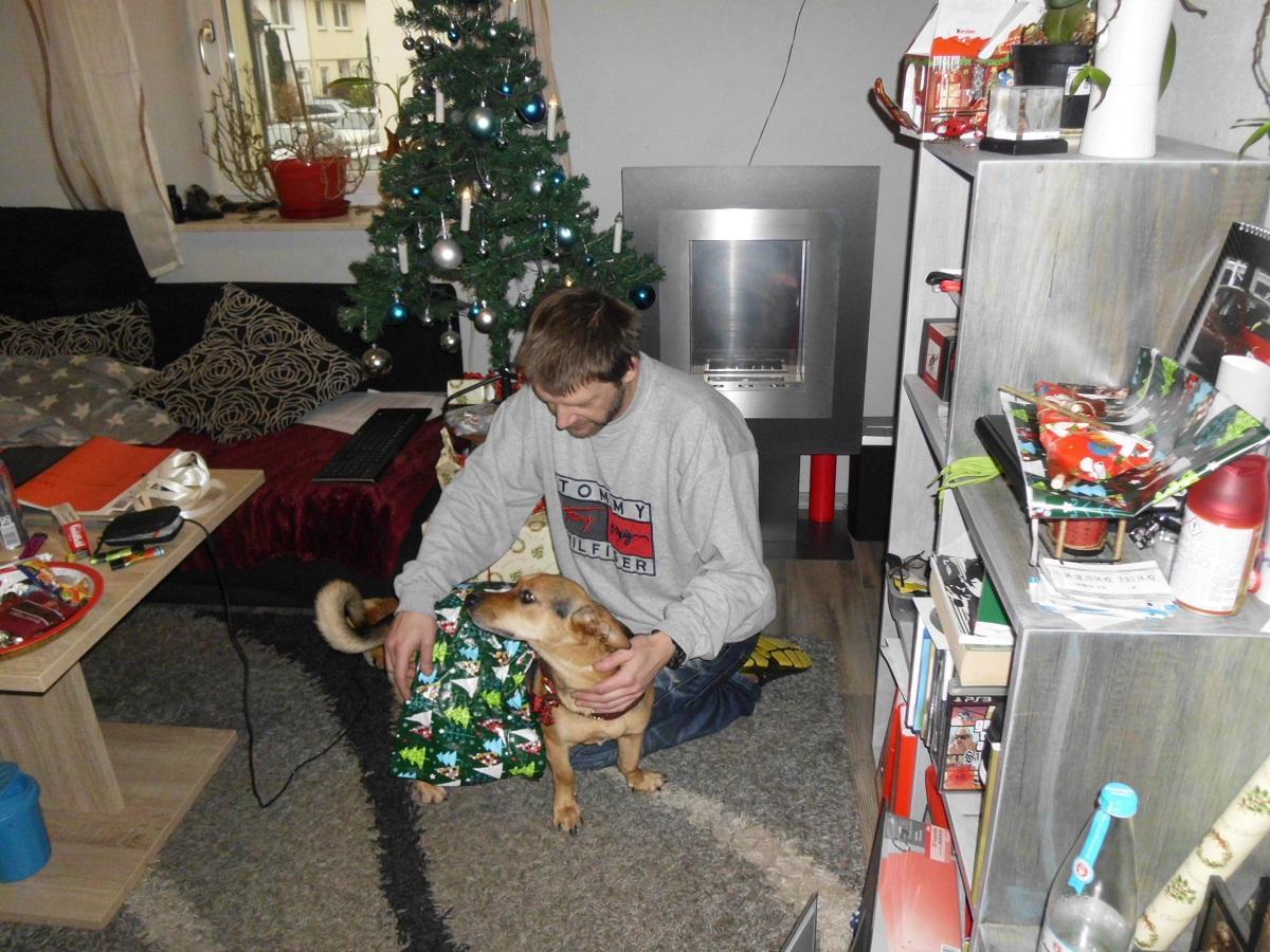 Weihnachtsgeschenk Hund. Mann beim auspacken eines Hundes