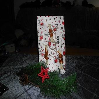 Weihnachtsgeschenke für Hunde. Das Geschenk für einen Hund
