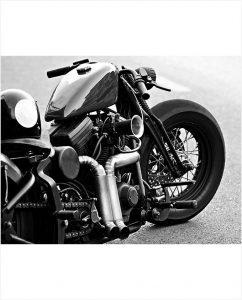Black Harley springer softail op plexiglas