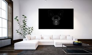 kunstwerk van hond op zwarte achtergrond op plexiglas