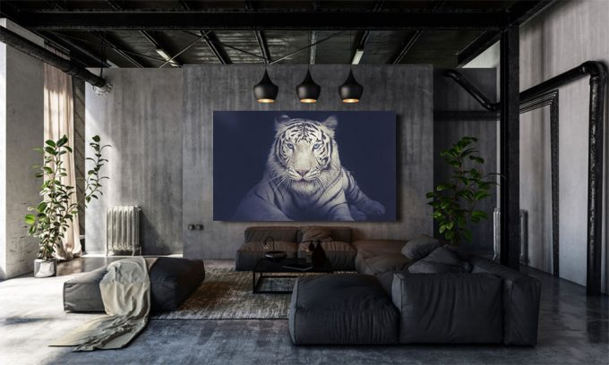 witte tijger in loft op plexiglas