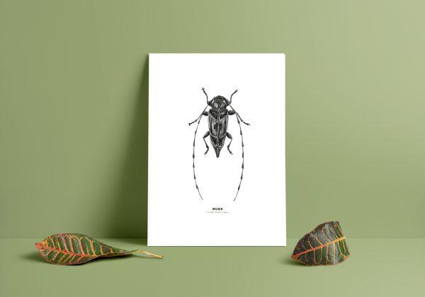 timmerman, affisch, tavla, print, poster