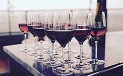 Tema Vin på Möckelsnäs