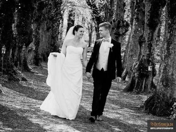 bryllupsfotograf brudepar går i alleen