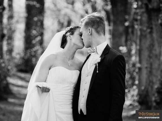bryllupsbillede brudepar kysser i alleen