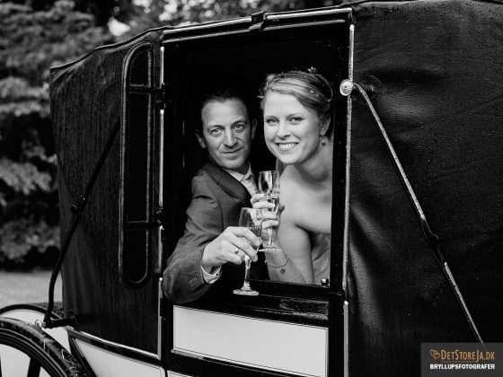 fotograf til bryllup brudepar skåler ud af hestevogn
