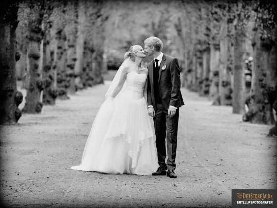 bryllup fotograf ungt brudepar gående i alle