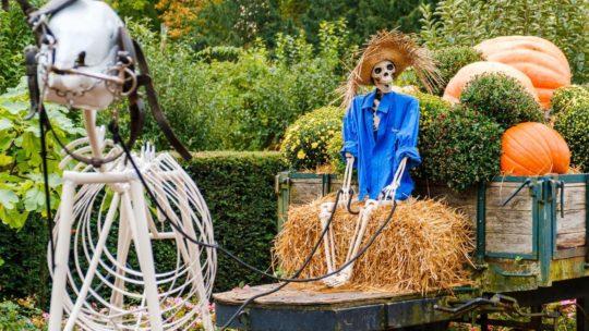 Halloween wordt superspannend in Pairi Daiza