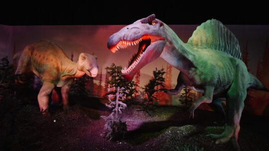 Expo Dino World: Op safari met levensechte dino's