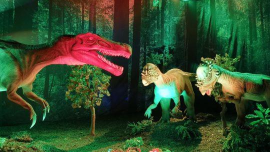 Reis door de tijd en ontdek de wondere wereld van dinosaurussen in Expo Dino World