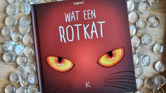 Humoristische kattenstreken van duivelse viervoeters in 'Wat een rotkat 2'