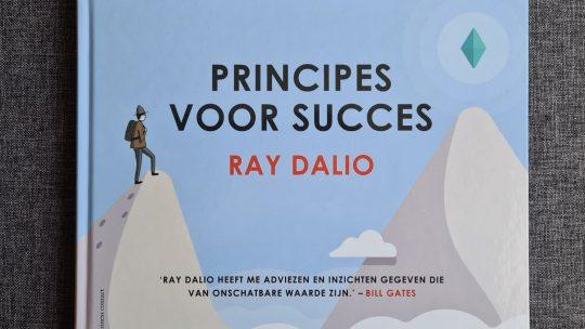 Topondernemer Ray Dalio zet zijn 'Principes voor succes' om in verhelderend beeldverhaal