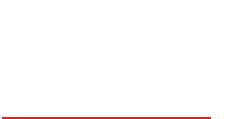 Logo Diamond Illusions white
