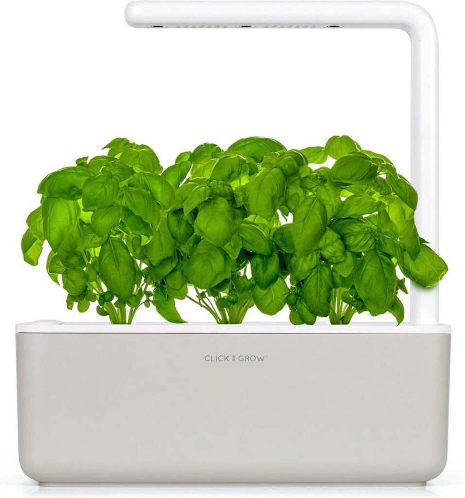 kweken van kruiden en planten binnenshuis