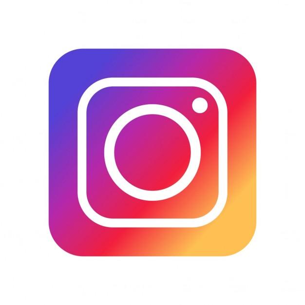 Die Eisbar auf Instagram