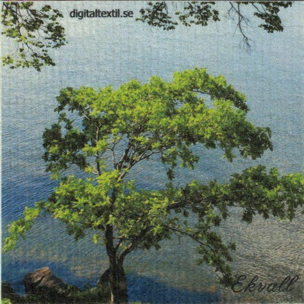 Disktrasa med motiv av Träd vid vatten Kjell Mari Ekvall