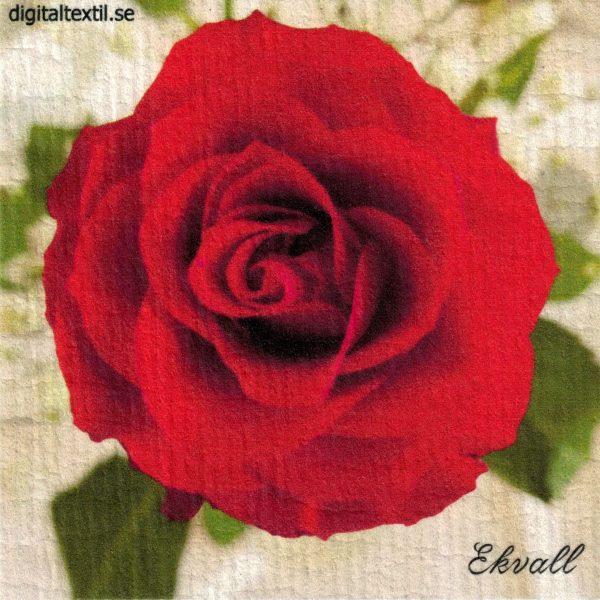 Disktrasa med motiv av Röd Ros Kjell Mari Ekvall