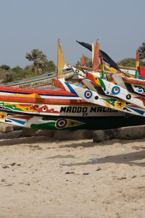 Private companies could help to protect Gambia's EEZ
