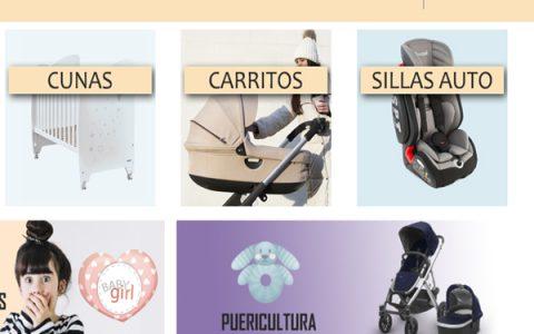 Diseño web castellón (26)