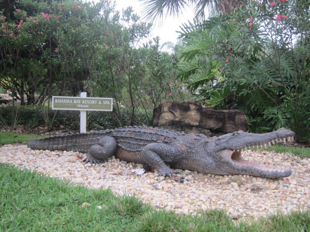 Crocodili at Bahama Bay Resort Orlando Florida