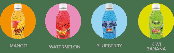 De soorten smaken van Noya