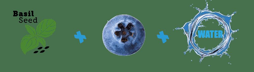 ingrediënten blueberry