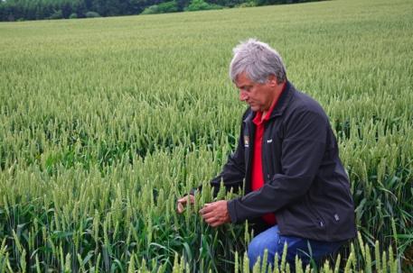 Biogødningen har vist sig at være rigtig godt for afgrøderne og landbrugsjorden. De spirer simpelthen bedre og er mere modstandsdygtige. Samtidig slipper vi for lugtgenerne og klager fra naboerne, da vi ikke længere bruger gylle under udspredningen, fortæller Birger Niemann