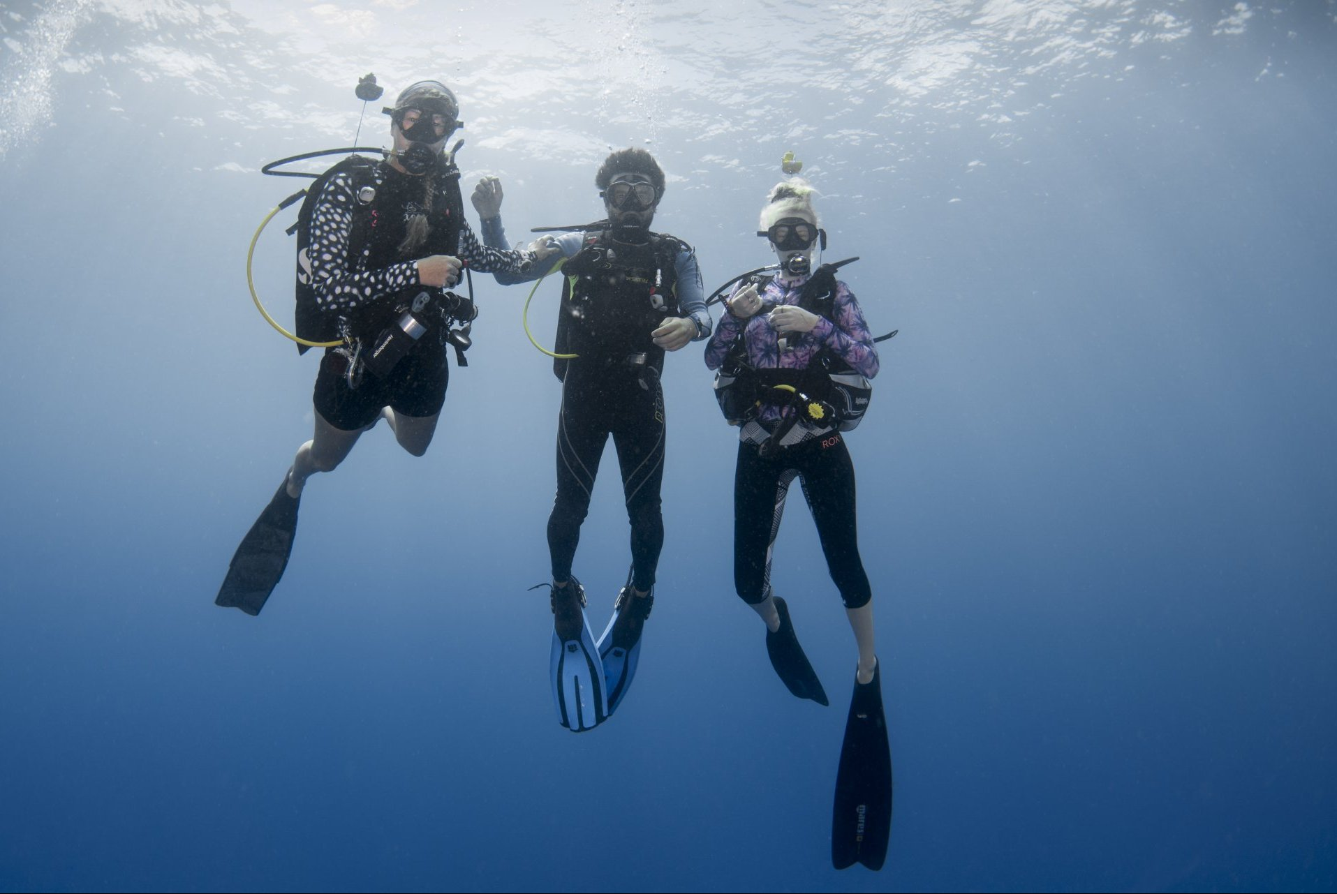 Ausbildungs Angebote Kurs Kombinationen Course Promotion Dive Training sale Specialty