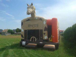 pony combo springkasteel