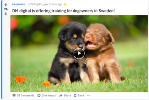 Annonsera på Reddit, annonsexempel